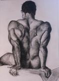 Drawings: Male Back
